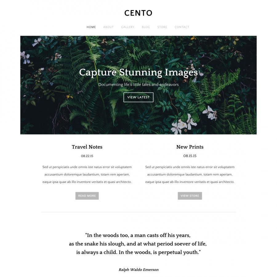Weebly template sample 4