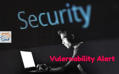 WordPress Plugin – Yuzo Related Posts – is vulnerable to malware.