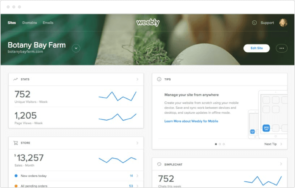 Performance at a glance with weebly stats